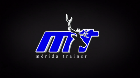 Merida Trainer Logo Treatment